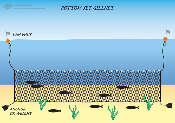 bottom_set_gillnet